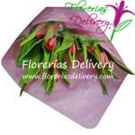 El pedido de tulipanes se debe realizar con dos dias de anticipacion debido a su excesiva demanda.